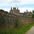 Over the garden wall (7699953718).jpg