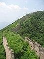Overgrown Great Wall (4753641408).jpg