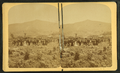 Owl's Head Slide, Jefferson, N.H, from Robert N. Dennis collection of stereoscopic views.png