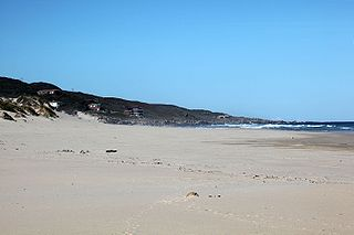 Oyster Bay, Eastern Cape Place in Eastern Cape, South Africa