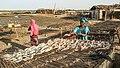 Pêcherie traditionnelle, salaison du poisson par les femmes de Joal Fadiouth, Sénégal.jpg
