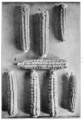 PSM V77 D355 Mendelian segregation in maize.png