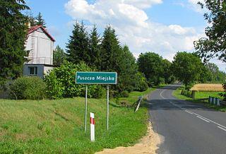 Puszcza Miejska Village in Kuyavian-Pomeranian Voivodeship, Poland
