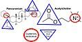 Pancuronium vs. Acetylcholine Structures.jpg