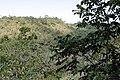 Panorâmica do cerrado da Serra de Caldas.jpg