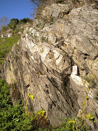 Massif Central (geology) - Neoproterozoic paragneis of the Arverne domain near Nontron, Dordogne. The light-coloured graywacke layer is boudinaged and dips steeply to the NNE.