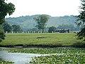 Parham Lake and Cricket Pitch - geograph.org.uk - 48883.jpg