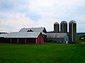 Parrell Family Farm - panoramio.jpg