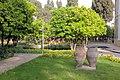 Pars Museum -Iran-shiraz موزه پارس شیراز 13.jpg