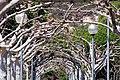 Paseo en el parque fluvial de Illueca - panoramio.jpg