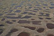 permafrost polygons on the ground.Image: United States Geological Survey.