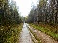 Permskiy r-n, Permskiy kray, Russia - panoramio (758).jpg