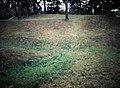 Petersburg Battlefield The Crater (10483239393).jpg