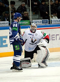 Petružálek and Garnett 2012-01-28 Amur—Traktor KHL-game.jpeg