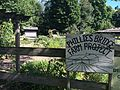 Phillies Bridge Farm Garden.jpg