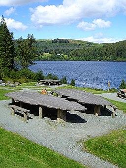 Picnic area, Lake Vyrnwy - geograph.org.uk - 510155