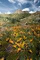 """Pico """"La Maliciosa"""" en Cuenca Alta de Manzanares (Vertical).jpg"""