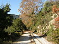 Pilio narrow gauge line - 7.JPG