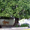 Plaza el Cotoperiz (The Cotoperiz square).png