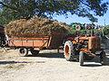 Plougoulm gouel an eost 2007 tracteur et sa remorque.JPG