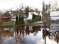 Pludi druvciema 2011 - panoramio (37).jpg