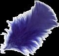 Pluma-azul-3L.png