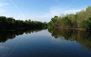 Mineral City Ponte Vedra Beach Florida