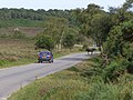 Pony on the road across Vales Moor, New Forest - geograph.org.uk - 495073.jpg