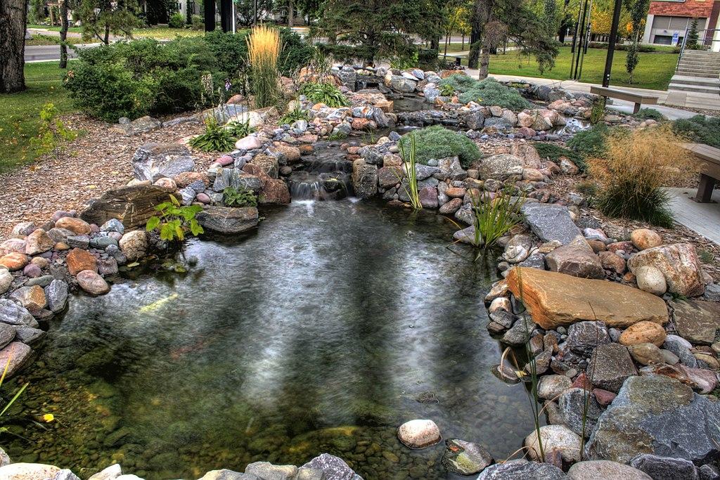 File pool university of alberta edmonton alberta canada 01 - University of alberta swimming pool ...
