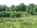 Pools beside the Afon Hirwaun - geograph.org.uk - 1362857.jpg