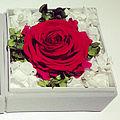 Preserved-flower-sample.jpg