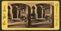 Prof. Packard in College library, from Robert N. Dennis collection of stereoscopic views.png