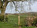 Public Bridleway off Waltham Lane - geograph.org.uk - 773760.jpg
