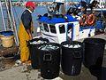Puerto pesquero de Bonanza.jpg