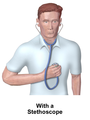 Pulse (Stethoscope).png