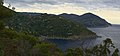 Punta del Carlino o Punta Levanto - panoramio.jpg