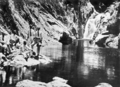 Queensland State Archives 916 Mirror Pool above Intake Freshwater Creek Cairns North Queensland c 1931.png