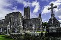 Quin Abbey, DSC 4288.jpg