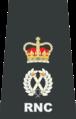 RNC Deputy Chief.png
