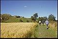 Ragnhildsholmen - KMB - 16001000035548.jpg
