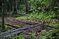 Railroad track - panoramio.jpg