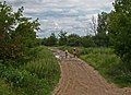 Ramensky District, Moscow Oblast, Russia - panoramio - Andris Malygin (1).jpg