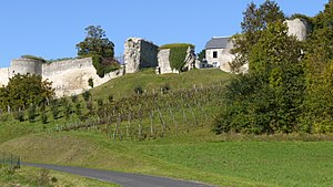 Coucy-le-Château-Auffrique - Ramparts