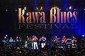 Rawa Blues Festival S Wierzcholski Band 008.jpg