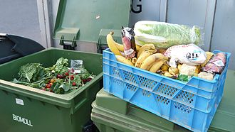 Freeganism - A box of vegetables and fruits recovered from the dumpsters of a hypermarket