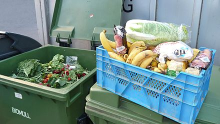 A box of vegetables and fruits recovered from the dumpsters of a hypermarket