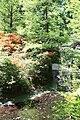 Rhododendronpark Bremen 20090513 074.JPG