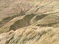 Ridge and gully systems, Allt Bhaile a' Mhuillin - geograph.org.uk - 719657.jpg