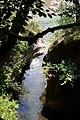 Riflessi selvaggi-Sentiero pian di Boit-Val Grande.jpg