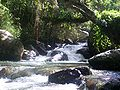 Rio Chama.JPG
